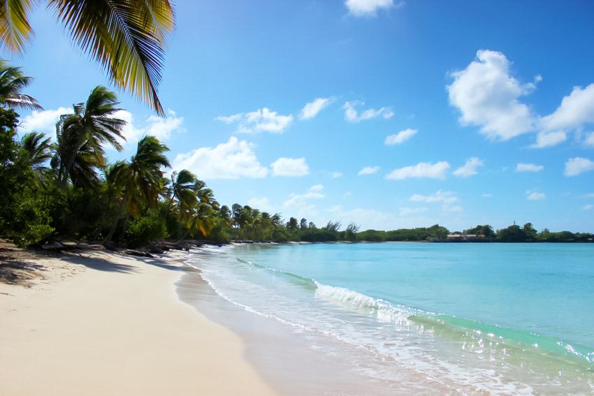 vacances Martinique blog voyage Artlex