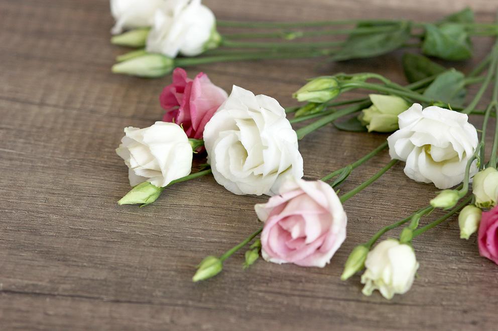 la-joie-des-fleurs-lisianthus