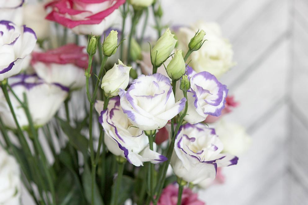 lisianthus-la-joie-des-fleurs