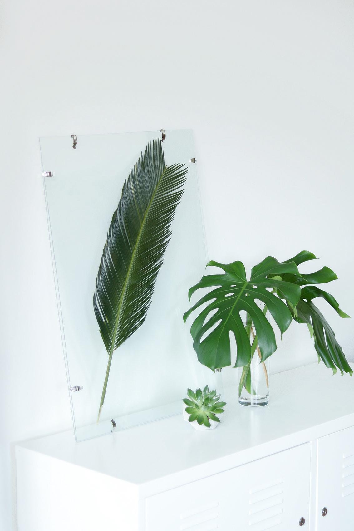 DIY-cadre-feuille-tropicale