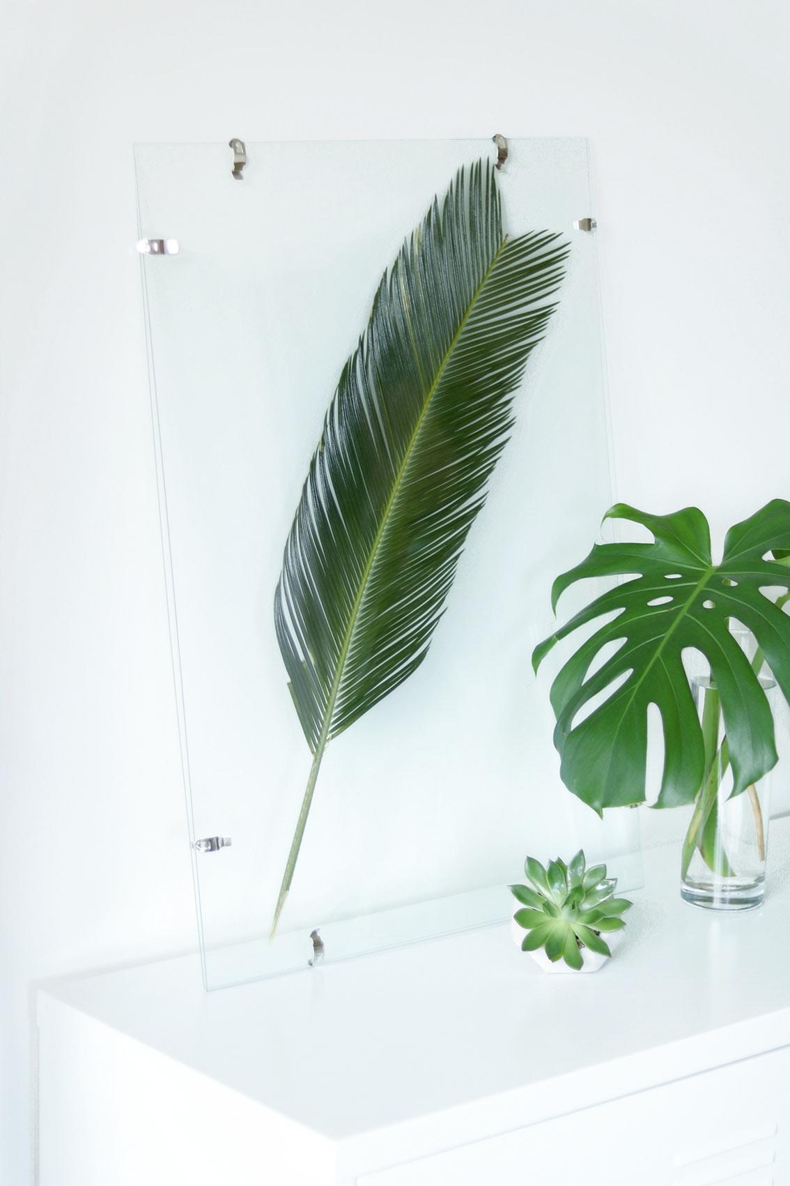 DIY-cadre-tropical