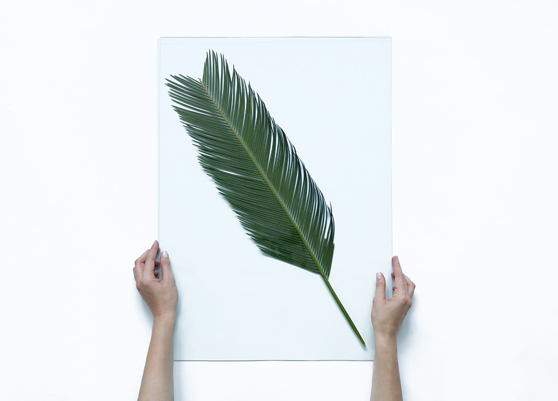 DIY-deco-feuille-tropicale