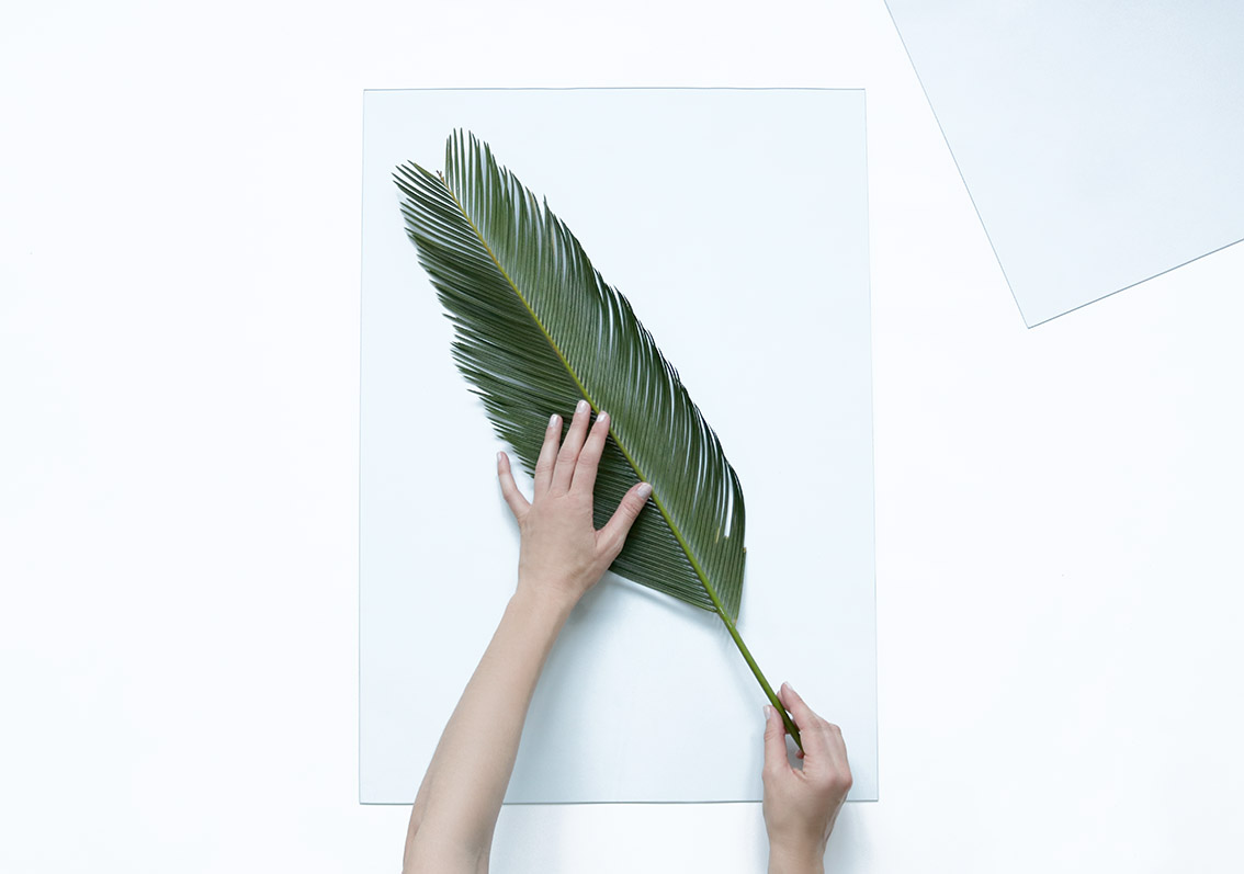 feuille-tropicale-DIY-deco