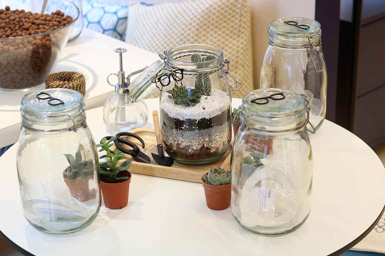 atelier-DIY-terrarium