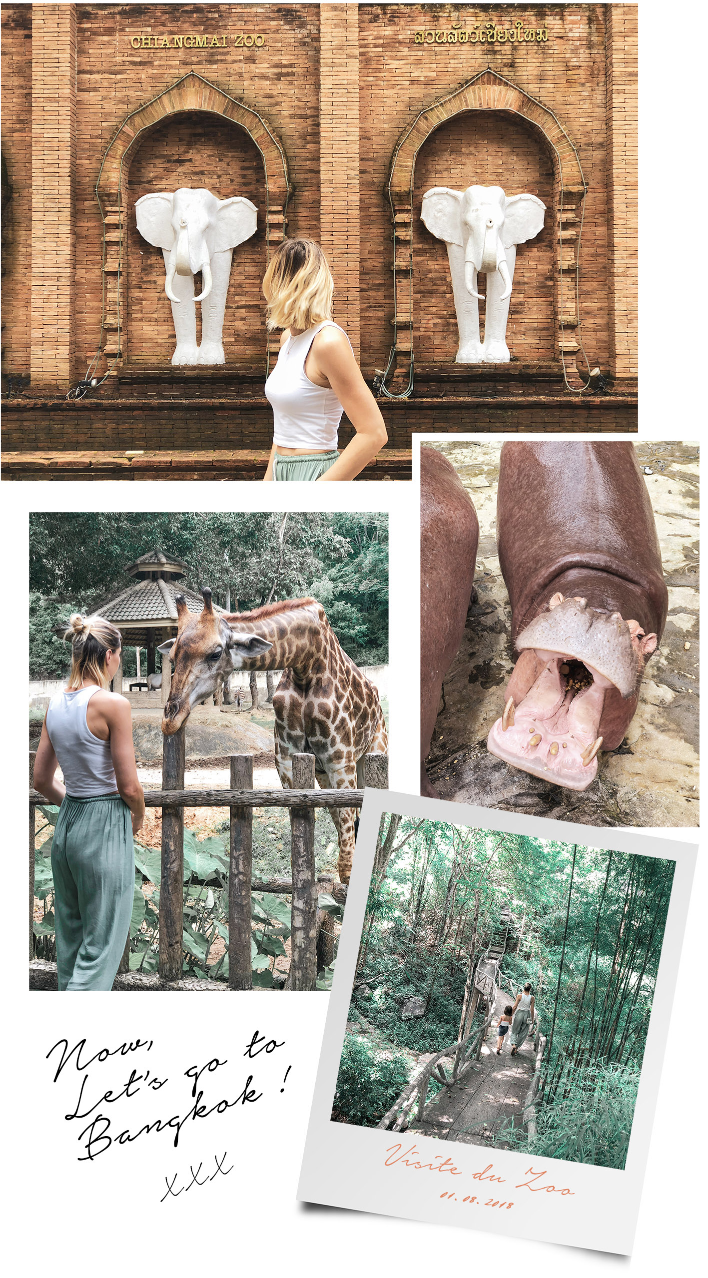 visite-zoo-chiang-mai