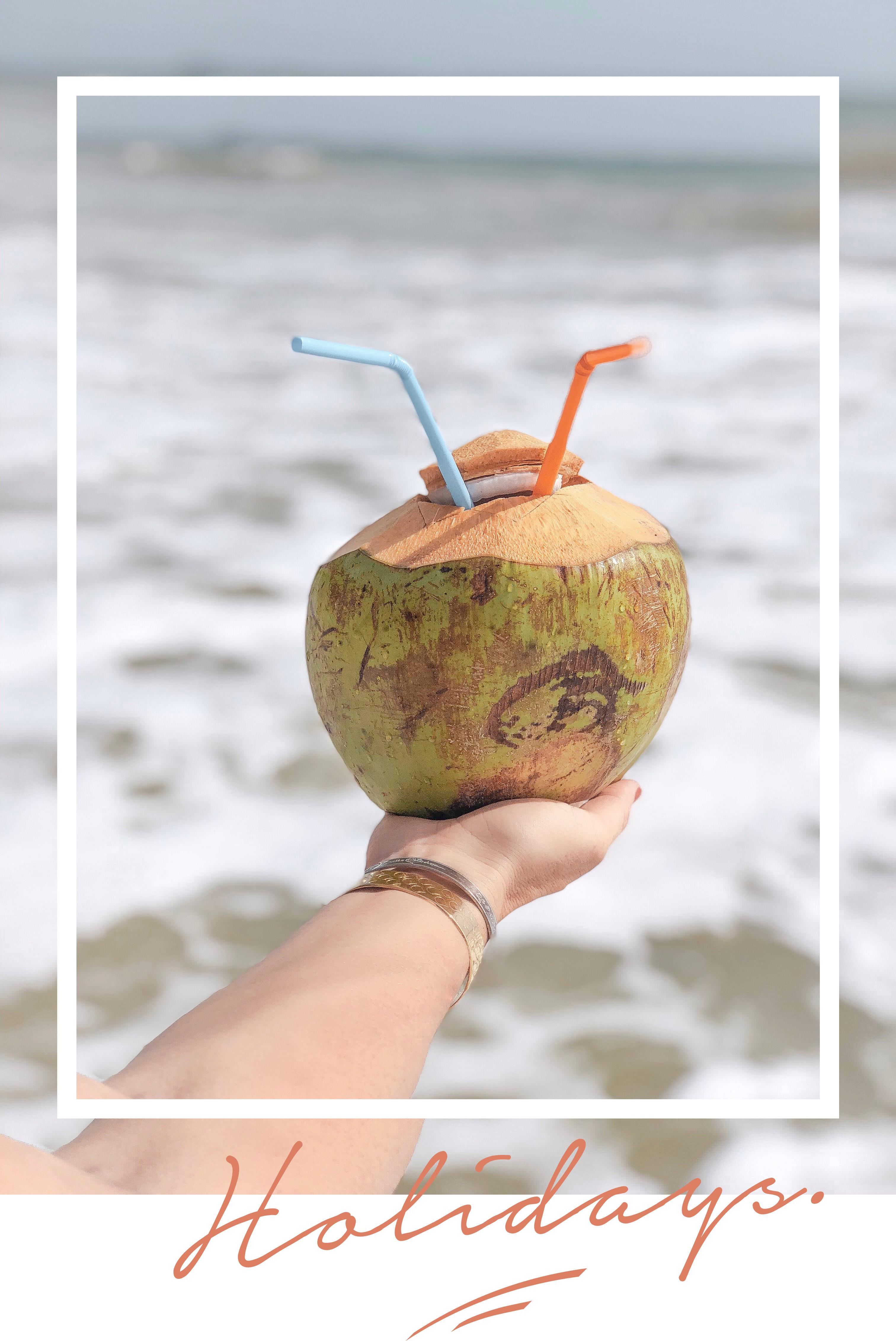 coconut-thailande