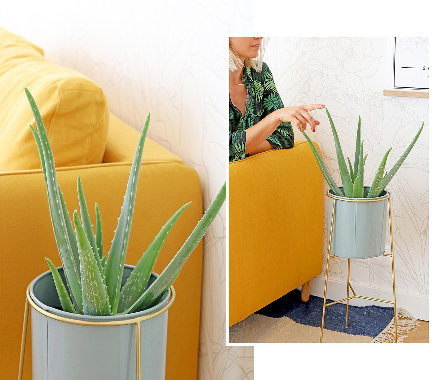 pot-plante-suspendu-design