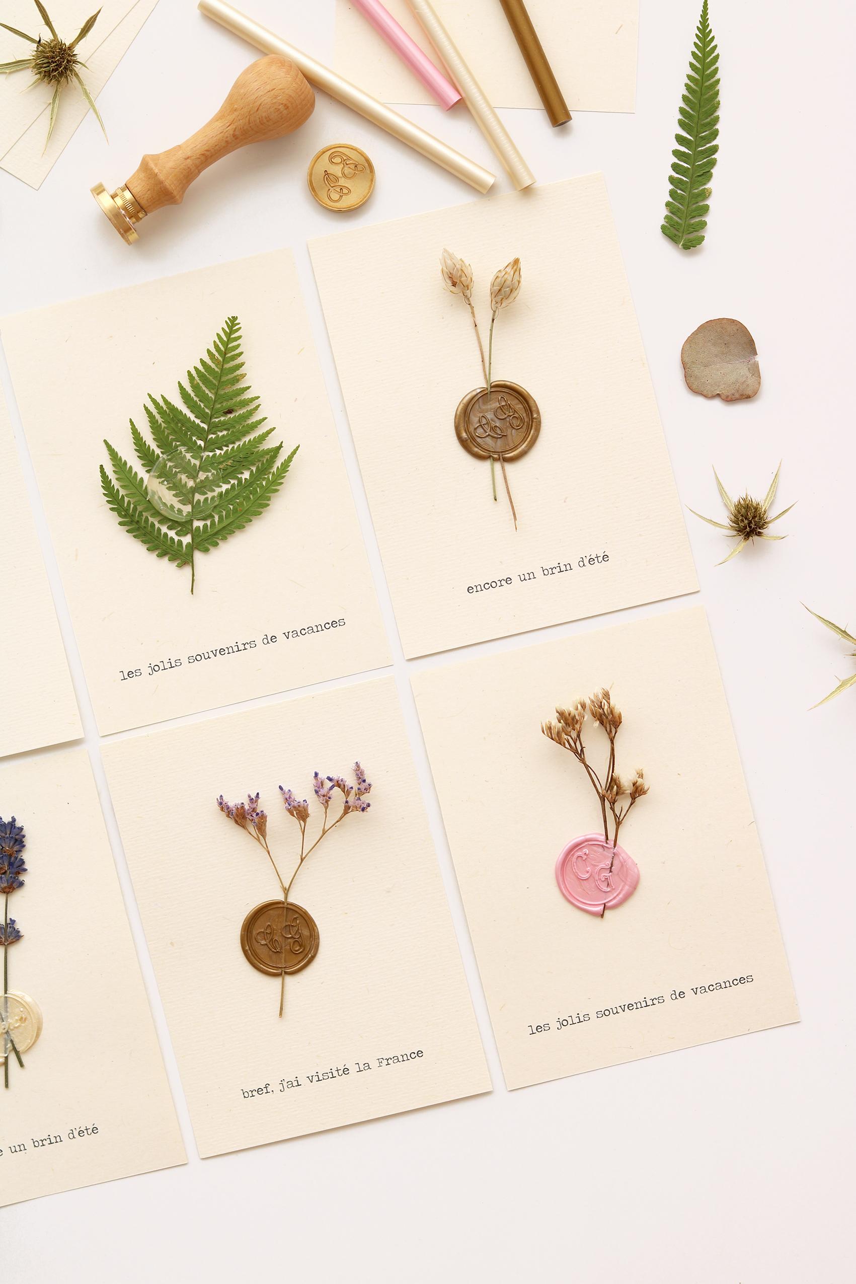 DIY-herbier-carte-postale